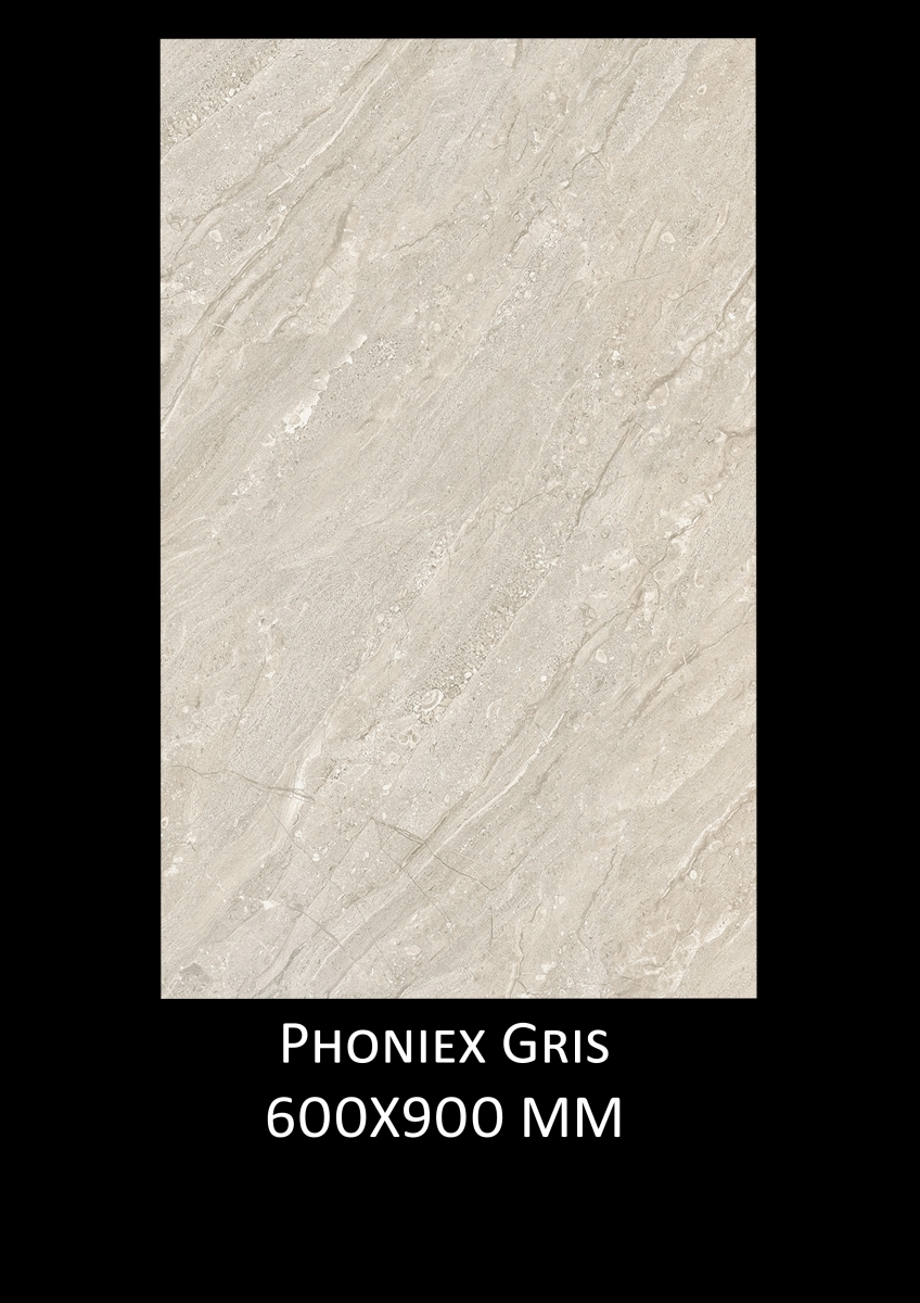 Phoniex-Gris