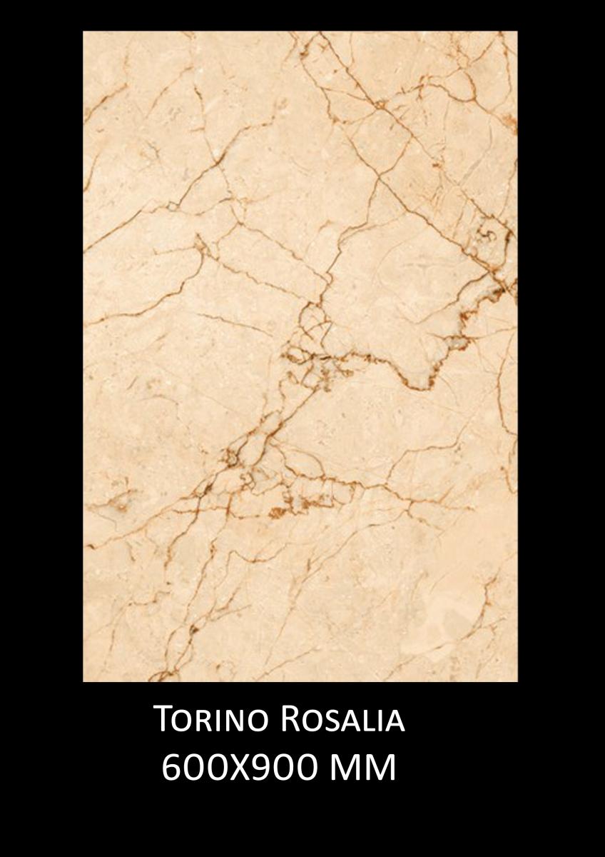 Torino-Rosalia